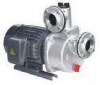 Bơm tự hút đầu Inox HSS250-11.5 265 (2HP)