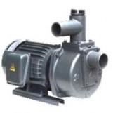 Máy bơm tự hút đầu gang HSP250-11.5 205 (2HP)