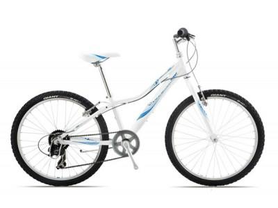 Xe đạp địa hình Giant 2013 REVEL JR 24
