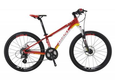 Xe đạp địa hình 2014 XTC 24-D