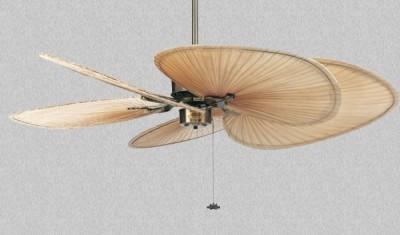 Quạt trần trang trí Fanimation Islander AB-ISP1(FP320)